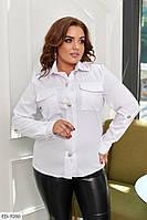 Жіноча стильна сорочка класична ділова з довгим рукавом великих розмірів батал р-ри 50-56 арт. 0169, фото 1
