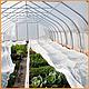 Агроволокно пакетоване 30 г/м2 біле 3.2х10 метрів, фото 6
