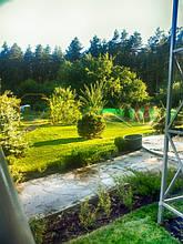Наши работы. Рулонный газон.Красный Оскол 2015 год.