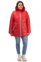 Зимова червона жіноча куртка прямого крою, великі розміри