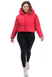 Зимняя красная короткая женская куртка Oversize