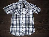 Рубашка мужская хлопок ЕМТ