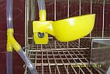 Микро чашечная поилка для перепелов, ниппельная поилка, фото 5