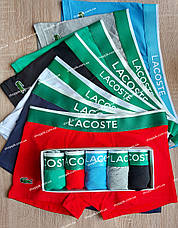 Чоловічі труси Lacoste і носки | труси лакоста, фото 2