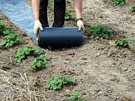 Як правильно укласти чорне агроволокно при використанні