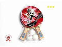 Теннисный набор TaiChi (301)