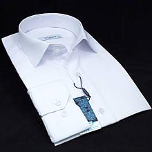 Сорочка чоловіча, приталена (Slim Fit), з довгим рукавом FITMENS/PASHAMEN E.001 TERRY COTTON 80% бавовна 20%