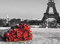 """Набір алмазної вишивки """"Париж і троянди"""""""