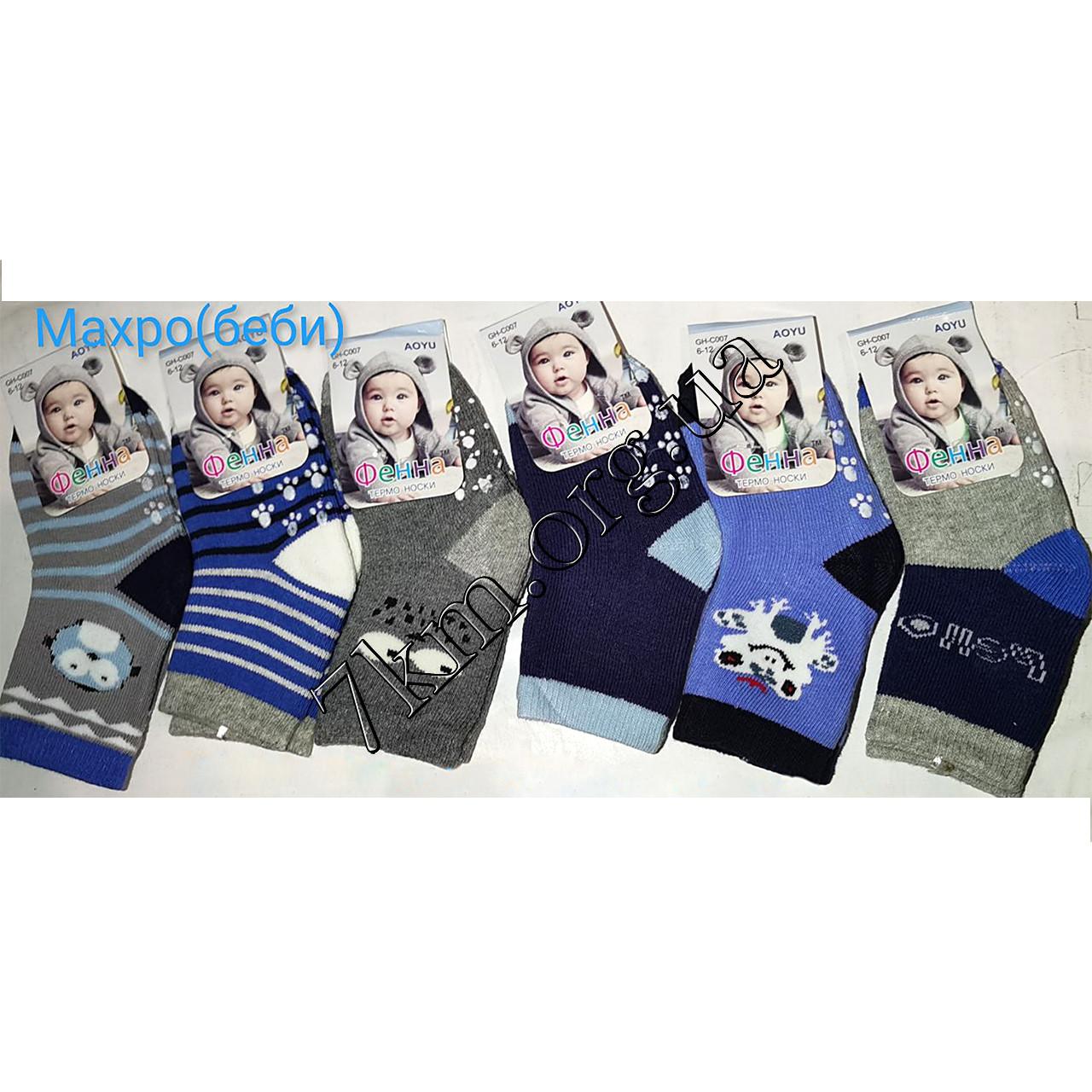 Шкарпетки дитячі махрові для хлопчиків Фенна 12-18 місяців Оптом C007
