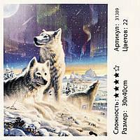 Картина за номерами: Північне сяйво. Розміри: 30 х 40 див. Малювання фарбами за номерами GP