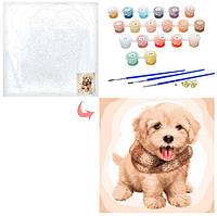 Картина рисование по номерам Пушистый щенок 40х40см