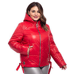 Модні осінні куртки жіночі від виробника розміри 50-60