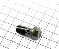 Болт тормозного шланга M10