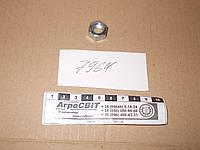 Гайка М10х1,0; стандарт DIN 934, класс прочности 8.0
