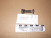 Спецболт М10х45 (с гайкой и гровером) культиваторный, стандарт ГОСТ 7786