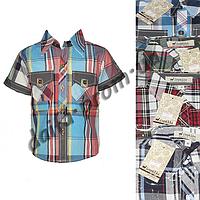 BR101. Котоновая рубашка с коротким рукавом  для мальчиков (3-7 лет) оптом в Одессе.