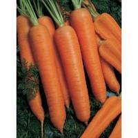 Семена моркови Наполи F1, Bejo Zaden (Нидерланды), 25 000 (1,6-1,8 мм) семян