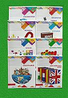 Набор предметных тетрадей 48 листов 8 шт