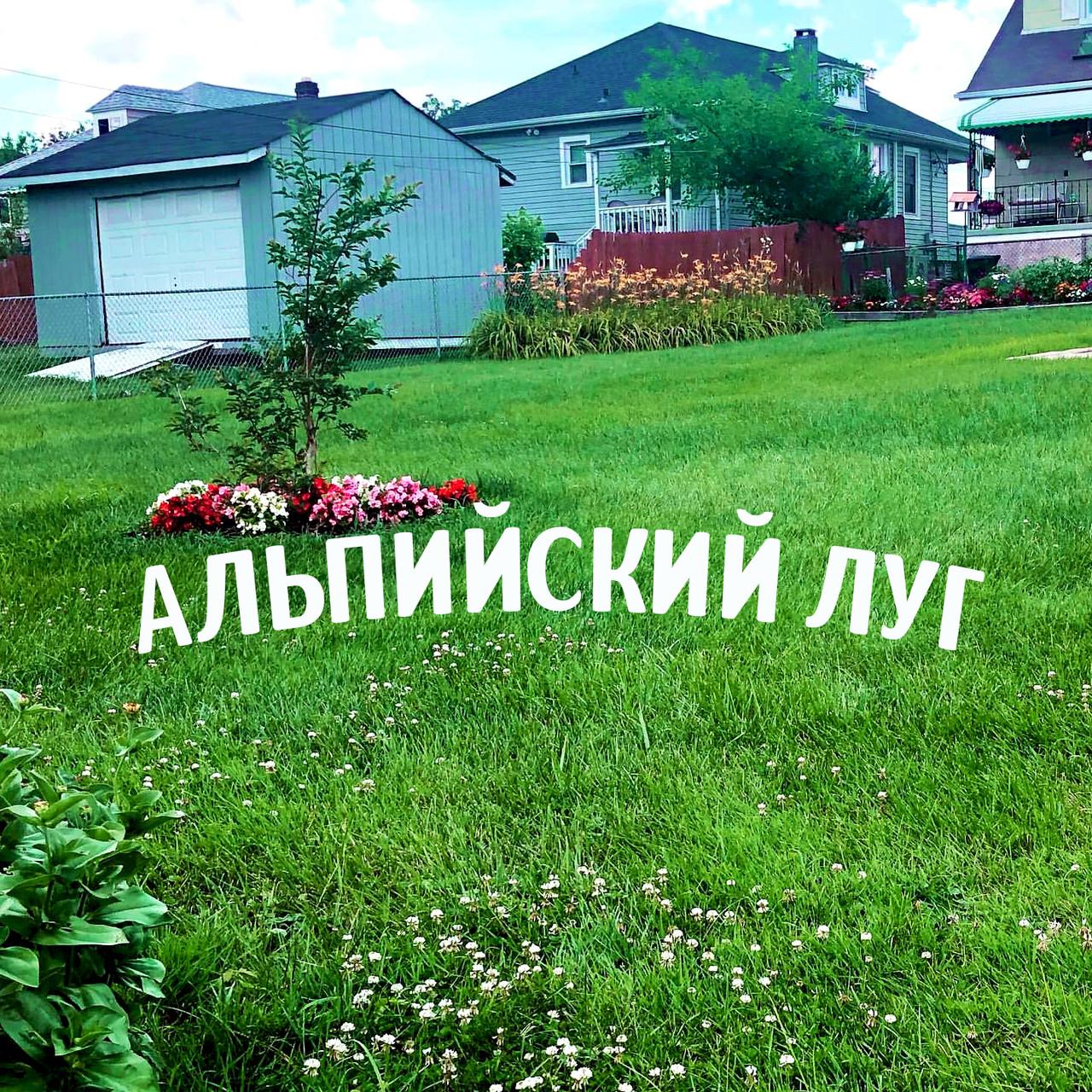 """Альпійська галявина - Газон БЕЗ ПРОБЛЕМ трава газонна """"для ледачих"""" з квітами квітучий газон прикраси для саду"""