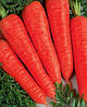 Морковь Осенняя Королева 20 г. Sakata (Саката)