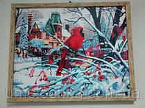 """Готовая картина по номерам """"Зима (снегирь)"""" 40 х 50 см(MG160)"""