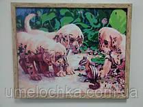 Готовая картина по номерам Щенки и бурундук KH1132