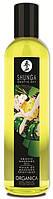 Массажное масло Erotic Massage Oil Exotic Green Tea Shunga Эротическое масло для массажа  Зеленый Чай