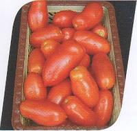 Семена томата Хердон F1 1000 сем.Seminis.