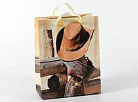 Подарунковий пакет Дикий Захід 23см