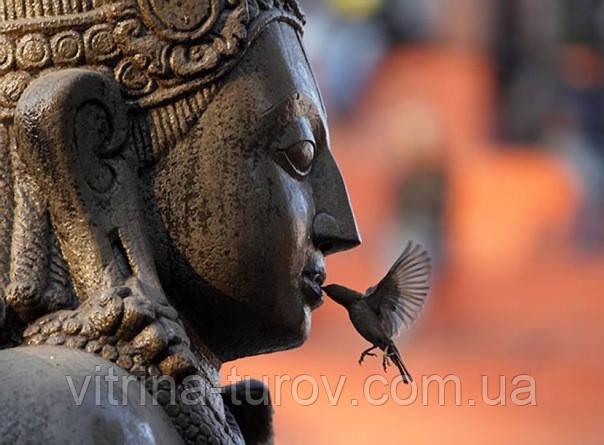 """Групповой тур в Индию """"На праздник Махашивратри - свадьба бога Шивы и богини Парвати-1"""" на 7 дней"""