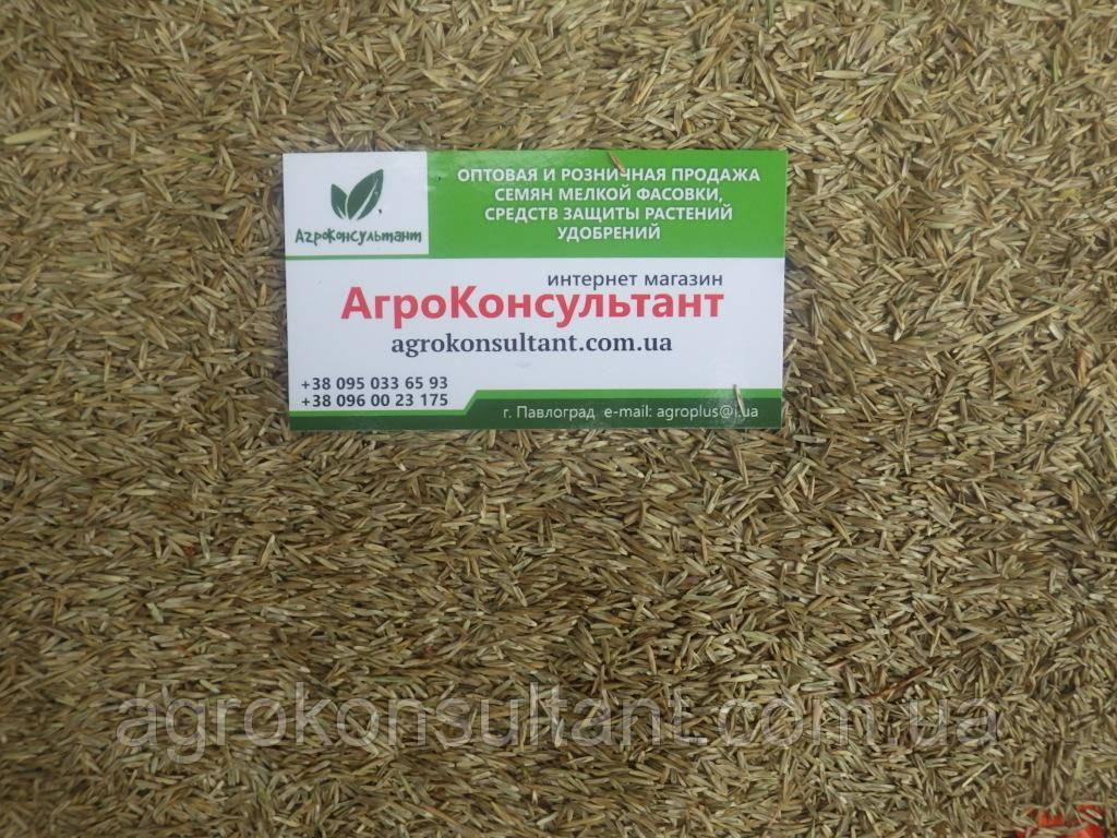 Семена газонной травы Спорт (DLF Trifolium), 1 кг - низкорослая травяная смесь, быстровостанавливающаяся