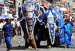 "Экскурсионный тур в Шри-Ланку ""Мини тур (MINI TOUR)"" на 1 ночь / 2 дня, фото 5"