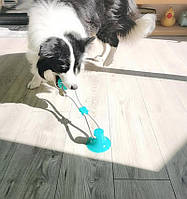 Іграшка для собак канат на присосці з м'ячем (GIPS)