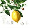 Набор постеров Сицилия, фото 4