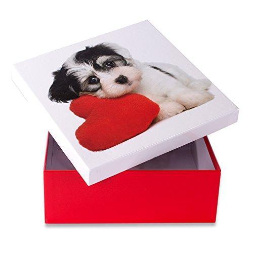 Коробка подарочная ООТВ Собака с сердцем 20 х 20 см