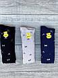 Колготы на подростков хлопок KBS с рисунком бантиков для девушек 6 шт в уп микс из 3х цветов, фото 4
