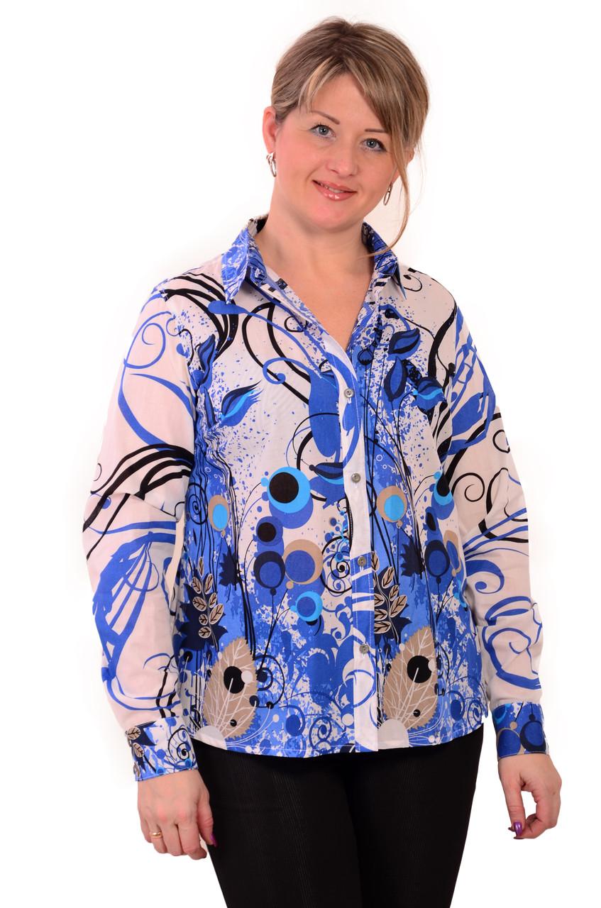 Блузка дитяча туніка з полірованого бавовни,46,48,50,52,54 , Бл 001-2