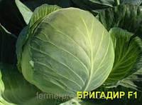 Семена Капуста белокочанная Бригадир F1 20 сем. Clause, Хранение до 5 месяцев., фото 1