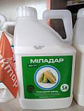 Гербіцид Миладар на кукурудзу ( Мілагро нікосульфурону 45 г/л) для знищення злакових та деяких двудольны, фото 2