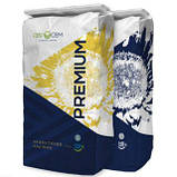 Семена подсолнечника Пегас (премиум) Евросем потенциал урожайности - 55 ц/ га, фото 2
