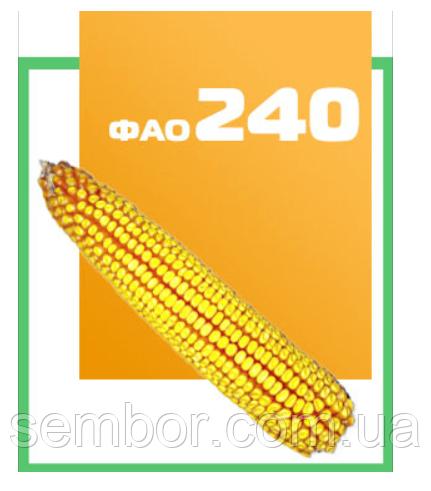 Кукуруза ДН ХОРТИЦА  (ФАО 240)  26,5 кг п.о. «Югагросервис»  Потенциал урожайности 135 ц/га
