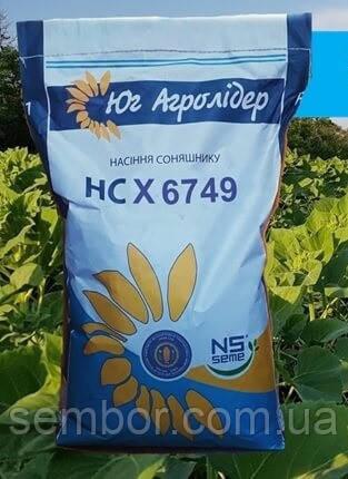 Семена подсолнечника НС Х 6749 Юг Агролидер (Под Гранстар) A-G+  фракция экстра