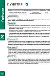 Гербіцид ПУНКТИР ( аналог АЛЬФА НУФУРОН   Мілагро) Нікосульфурону, 750 г / кг  для кукурудзи, фото 2