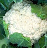 Семена Капуста цветная Опал F1 20 сем.  Rijk Zwaan, Очень ранняя