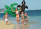 """Дитячий надувний пліт з ручками """"Морська Черепаха"""" для купання Intex 57524 NP (127*150 см), зелений, фото 4"""
