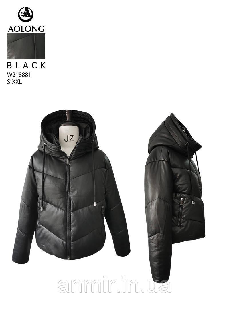 Зимові куртки і пальта жіночі