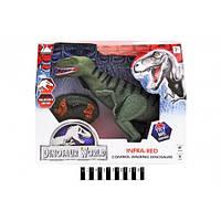 Динозавр (радіокерування, муз зі світлом, коробка) RS6129A р.36,6*30,9*8,1см.