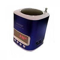 Портативна МР3 FM колонка WSTER WS-259 Dark Blue