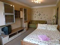 Уютная и светлая квартира возле метро КПИ, Студио (82922)