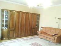 Европейский уют квартиры для 5-х в полулюксе, 2х-комнатная (16889)